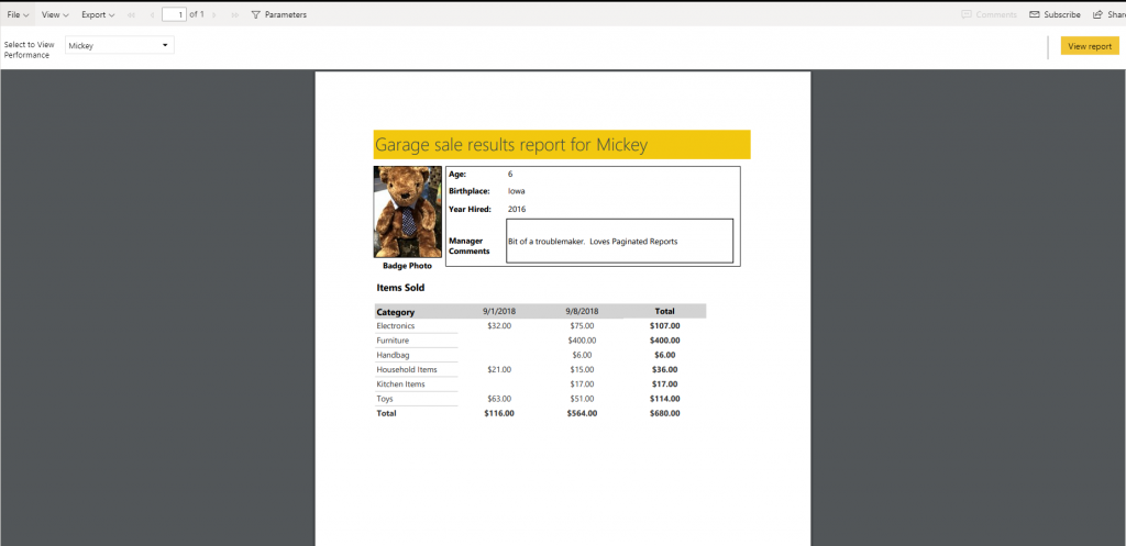 full view of report using new page view option